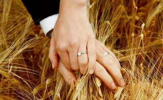 Wedding rings - harvest time wedding - Wedding photographer Innishannon